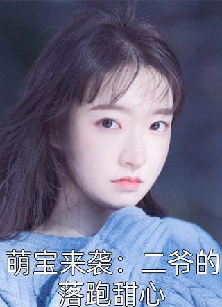 萌宝来袭:二爷的落跑甜心小说