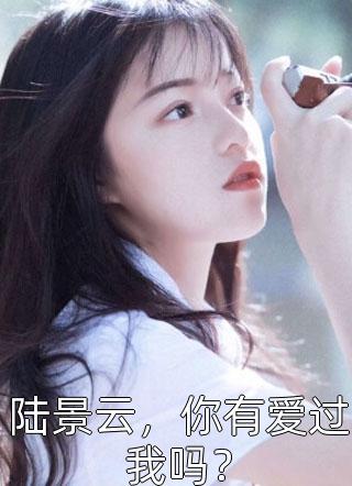 经典小说陆景云,你有爱过我吗?免费阅读