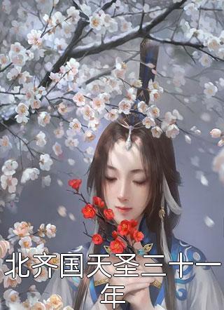 北齐国天圣三十一年小说