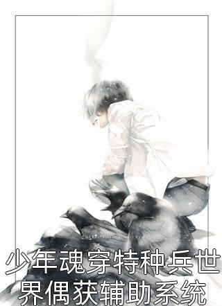 少年魂穿特种兵世界偶获辅助系统小说