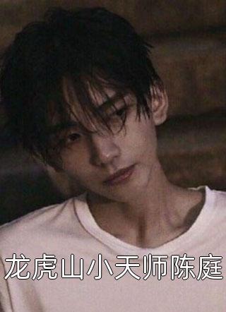龙虎山小天师陈庭小说