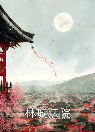 林城法院小说