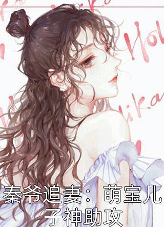 秦爷追妻:萌宝儿子神助攻完结版精彩阅读-時年小说