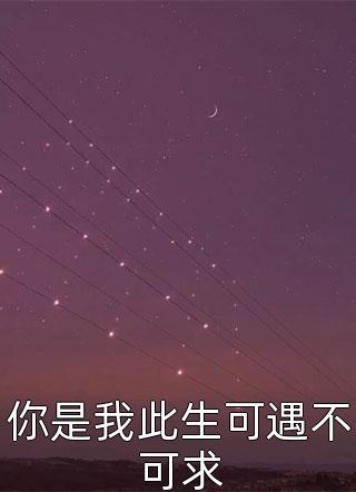 长木雨风写的小说(你是我此生可遇不可求)
