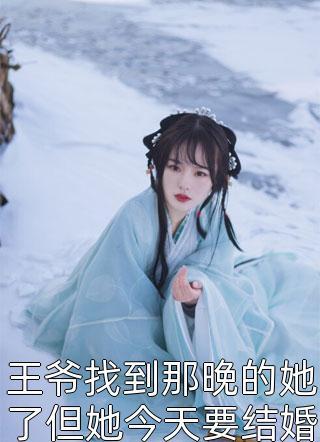 王爷找到那晚的她了但她今天要结婚了by热宫娘娘全章节免费阅读