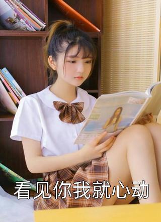 书荒求小说看见你我就心动by月流光精彩试读