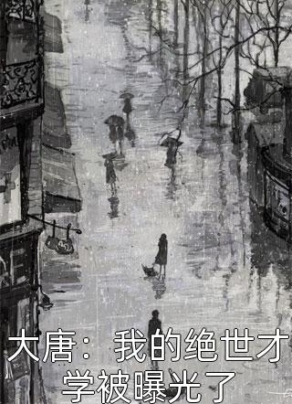 小胖的熊猫写的小说(大唐:我的绝世才学被曝光了)