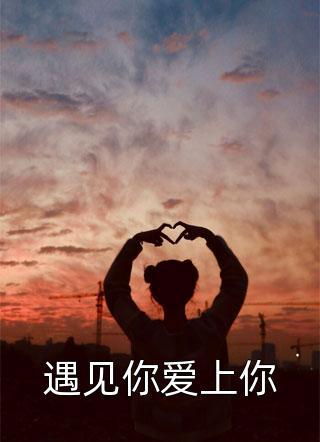 青耳写的小说(遇见你爱上你)
