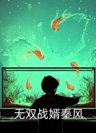 无双战婿秦风小说
