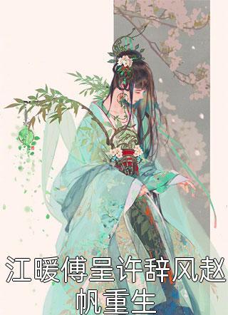 江暖傅呈许辞风赵帆重生小说