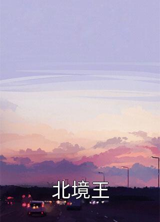 北境王小说