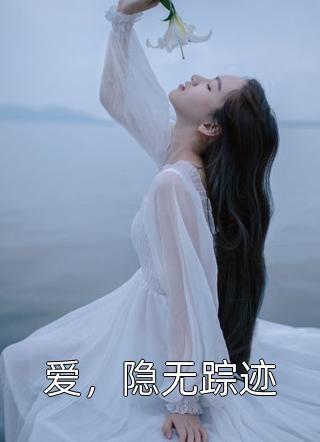 爱,隐无踪迹小说