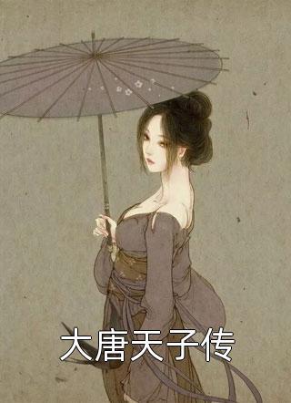 大唐天子传小说