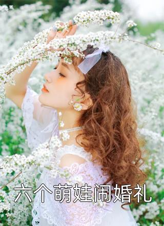 六个萌娃闹婚礼小说