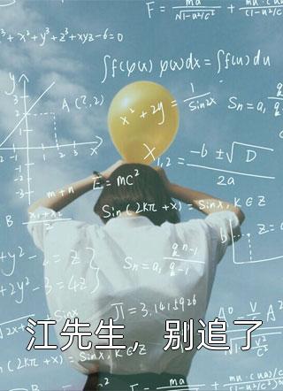 江先生,别追了小说