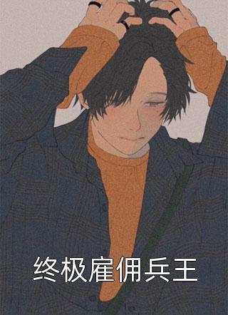 终极雇佣兵王小说