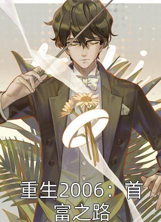 重生2006:首富之路免费阅读-同歌青云写的小说