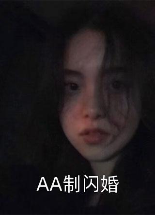 AA制闪婚小说