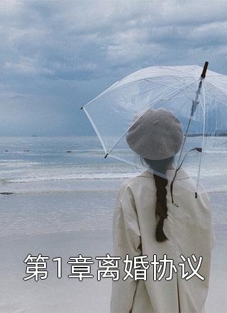 夏安迪写的小说-第1章离婚协议最新章节