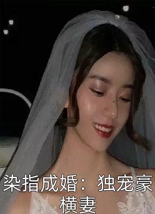 人气小说染指成婚:独宠豪横妻在线阅读全章节