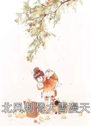 北风刺骨大雪漫天小说
