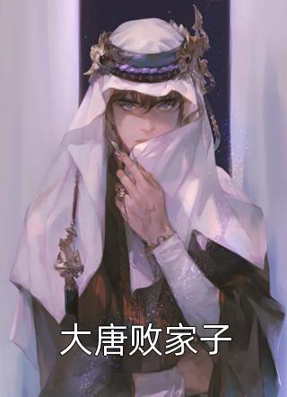 大唐败家子小说